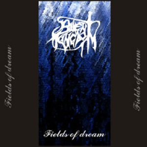 Silent Kingdom - Fields of Dream cover art
