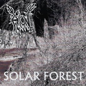 Haunt - Solar Forest cover art