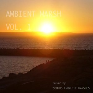 Sounds From The Marshes - Ambient Marsh Vol​.​1 cover art
