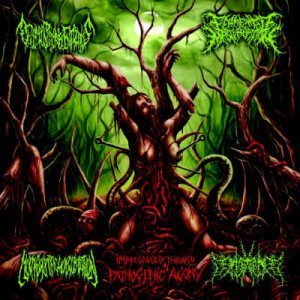 Fermented Masturbation - Impregnated Through Pathogenic Agony cover art