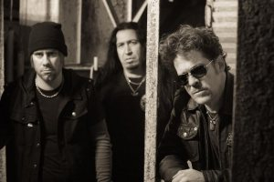 Newsted photo
