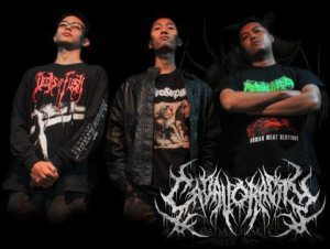 Cadavoracity photo