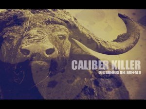 Caliber Killer photo