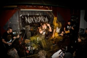 Nux Vomica photo