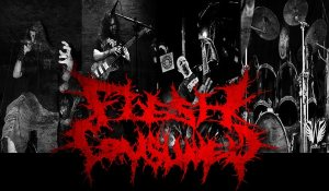 Flesh Consumed photo