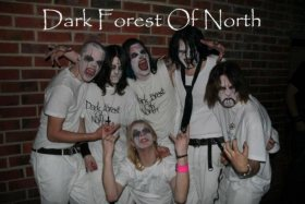 Dark Forest of North photo