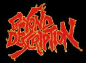 Beyond Description logo