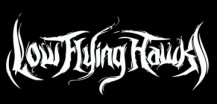 Low Flying Hawks logo