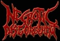 Necrotic Disgorgement logo