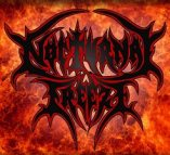 Nocturnal Freeze logo