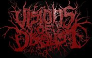 Visions Of Disgust logo