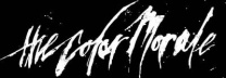 The Color Morale logo