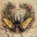Caina - Temporary Antennae