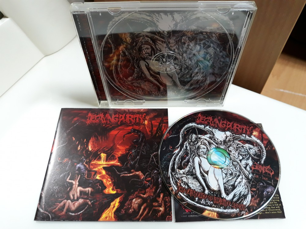 Decaying Purity - The Existence of Infinite Agony CD Photo