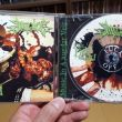 Impaled - The Dead Shall Dead Remain CD Photo by dragon709