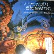 Deadly Blessing - Ascend from the Cauldron Vinyl Photo by 스래쉬