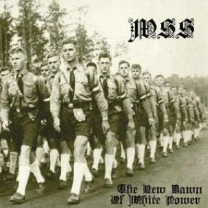 Waffen SS - The New Dawn of White Power cover art