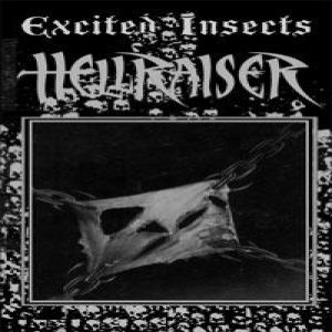 Excited Insects - Hell Raiser cover art