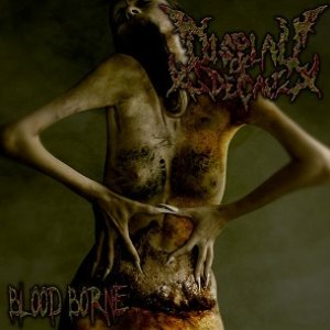 Display of Decay - Blood Borne cover art
