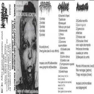Bowel Stew / Cannibe / Necrobiose Escrotal - 3 Ways of Violent Accidents cover art