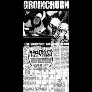Intestinal Infection / Groinchurn - Groinchurn / Intestinal Infection cover art