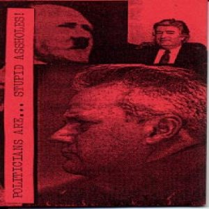 Clotted Symmetric Sexual Organ - Politicians Are... Stupid Assholes! cover art