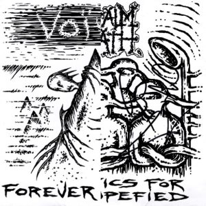 Napalm Death / Voivod - Forever Mountain / Phonetics for the Stupefied cover art