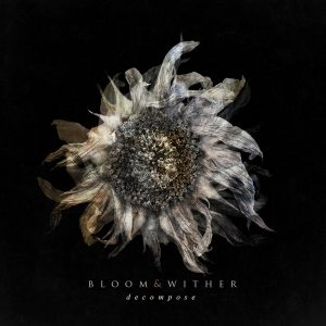 Bloom & Wither - Decompose cover art