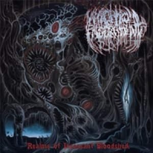 Necroptic Engorgement - Realms of Incessant Bloodshed cover art