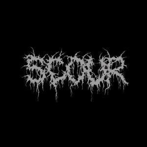 Scour - Scour cover art