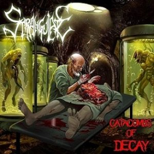 Strangulate - Catacombs of Decay cover art