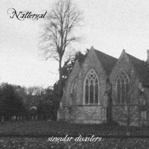 Nattergal - Singular Disasters cover art