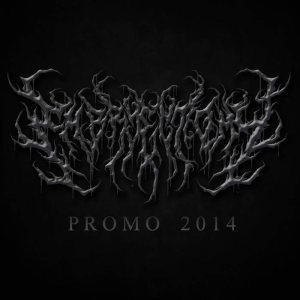 Embryectomy - Promo 2014 cover art