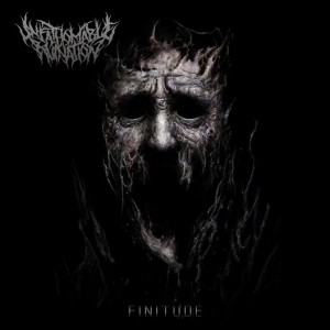 Unfathomable Ruination - Finitude cover art