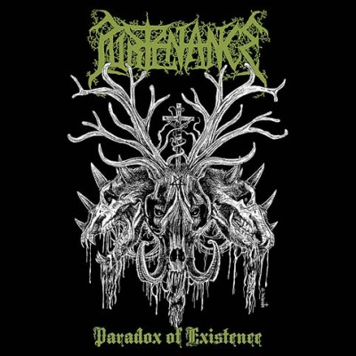 Purtenance - Paradox of Existence cover art