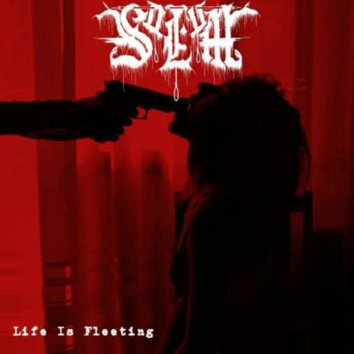 Solum - Life Is Fleeting cover art