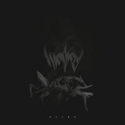 Wowod - Nutro cover art