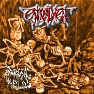 Enthrallment - Burning Fields