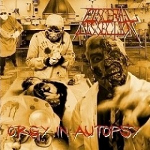 Visceral Dissection - Orgy in Autopsy