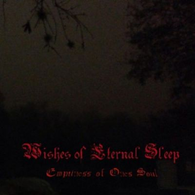Wishes of Eternal Sleep - Emptiness of One's Soul