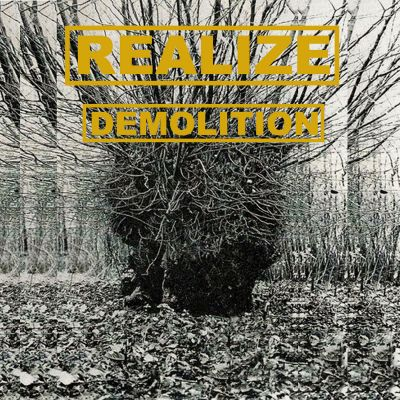Realize - Demolition