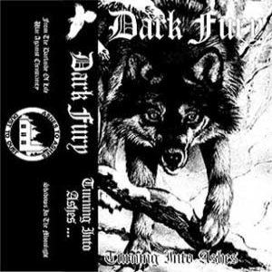 Dark Fury - Turning Into Ashes cover art