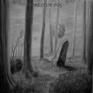Forest Of Fog - Rabenflug cover art
