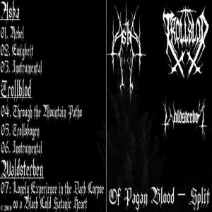 Waldsterben - Of Pagan Blood cover art