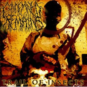 Condemned Remains - Trail of Insects cover art