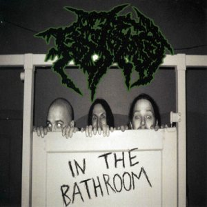 Foetopsy - In the Bathroom cover art