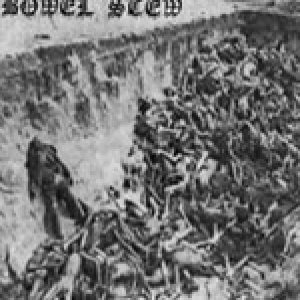 Bowel Stew - Infernal Mass Grave cover art