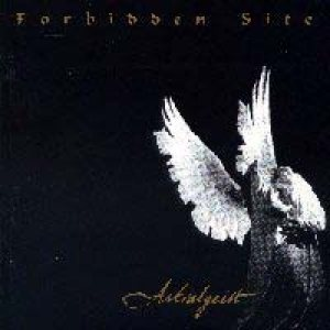Forbidden Site - Astralgeist cover art