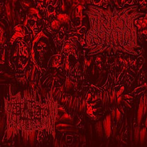Virulent Gestation - Virulent Gestation / Fetal Mutilation cover art