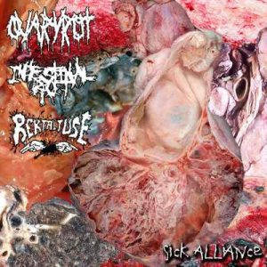 Intestinal Rot - Sick Alliance cover art